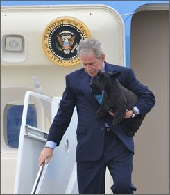  President Bush, carrying his dog Barney, arrives at TSTC airfield in Waco, Texas, Friday Aug. 15, 2008, to begin his summer vacation at his ranch near Crawford Texas. (AP Photo/Rod Aydelotte)