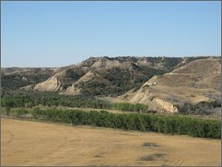 In this photo provided by the U.S. Forest Service, Theodore Roosevelt's Elkhorn Ranch site near Medora, N.D., is seen in on Sept. 17, 2007. Billings County officials want to build a crossing over the Little Missouri River and a road to cut commute times for locals. Opponents worry it would be a road heavy with oil traffic and RVs, ruining an area that inspired the conservation-minded president. (U.S. Forest Service Photo)