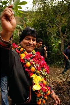 Bolivia's President Evo Morales, wearing a wreath of coca leaves, fruits and flowers, walks through a coca field as soldiers eradicate coca plants in Asunta, Bolivia, Saturday, Oct. 4, 2008. Morales has rejected a request from the U.S. Drug Enforcement Administration, DEA, to fly anti-narcotics missions over Bolivia, state media reports.(AP Photo/Juan Karita)