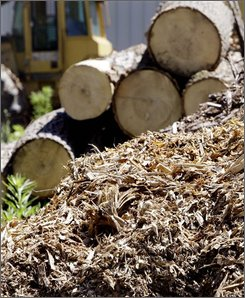 Piles of wood chips are piled next to logs at the site of a proposed  50-megawatt power plant, which would run on the waste wood chips, in Russell, Mass., Thursday July 10, 2008. (AP Photo/Charles Krupa)