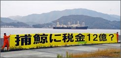 "In this photo released by the environmental group Greenpeace Japan, Greenpeace members hold up a banner reading; ""1.2 billion yen (US$12.4 million) of tax money for whaling?"" in Kamijima as Japanese whaling mother vessel Nisshin Maru departs from its home port of Innoshima Monday, Nov. 17, 2008. Greenpeace said Japanese whaling ships left the southwestern Japanese port Monday en route to this season's hunt in the Antarctic Ocean. (AP Photo/Yuzuru Oshihara, Greenpeace Japan)"