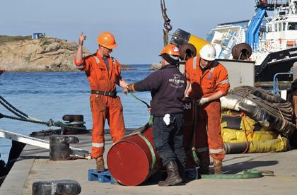 COSTA CONCORDIA's capsizing poses environmental risks