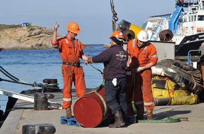 COSTA CONCORDIA's capsizing poses environmental risks