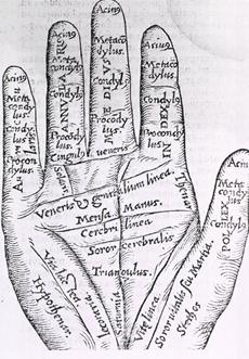 Finger length not affected by fetal testosterone