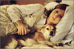 Obsession: Always-happy Peggy (Molly Shannon) becomes a strident animal rescuer after she loses her pet beagle, Pencil, who dies after venturing into a neighbor's backyard.