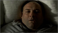 The end: James Gandolfini played Tony Soprano for eight good long years.