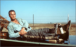 Calm, cool, incarcerated: Paul Newman starred as Luke Jackson in 1967's Cool Hand Luke.