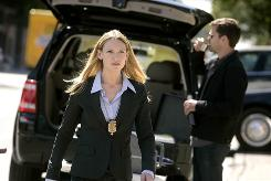 Anna Torv stars as an FBI agent on the case of Fringe crimes. Joshua Jackson plays the son of a mad scientist.