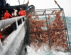 """""""This is real-life drama"""": The action of the crab harvest will again take center stage, says producer Thom Beers, but the fifth season also will delve into the sinking of the Katmai in October."""
