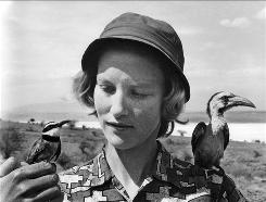 Animal lover and conservationist Joan Thorpe Root was born and reared in Kenya. Divorced, she lived alone in a farmhouse on Lake Naivasha until she was murdered at age 69 by masked men wielding AK-47s.