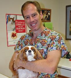 Veterinarian Shawn Messonnier, with Rita, says that  &quot;a matter of minutes, five or 10 minutes,&quot; is all it takes on a hot day for a dog to wind up organ-damaged or dead.
