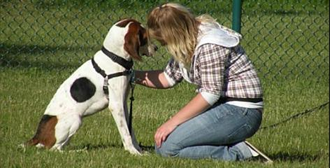 A student trainer works with Jewell in the Teacher's Pet: Dogs and Kids Learning Together program, which links destined-for-euthanasia dogs with emotionally impaired students. Both trainers and dogs learn and benefit.