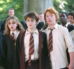 Emma Watson, Daniel Radcliffe and Rupert Grint have starred in all six of the Harry Potter films so far, which have earned a domestic gross total of $1.7 billion.