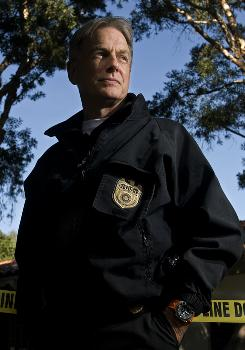 A commanding presence: Star Mark Harmon has quietly guided the CBS procedural NCIS to the top as television's most-watched scripted series. It's now in its seventh season.