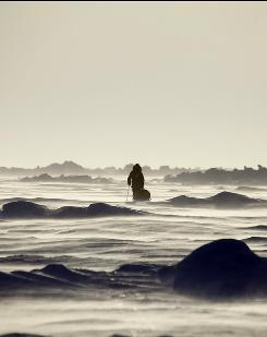 Isolation on the ice: Keith Heger en route to the North Pole with Sebastian Copeland in Into the Cold. The film documenting their 400-mile journey is screening at the Tribeca Film Festival.
