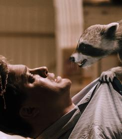 "This radical raccoon and other creatures fight back when a ""green""-company executive (Brendan Fraser) bulldozes their land."