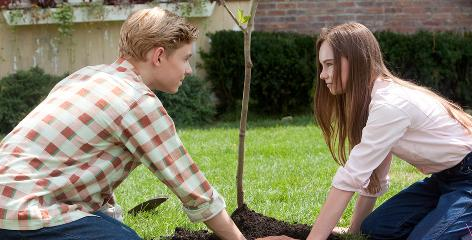 Romance blossoms for middle-schooler Juli (Madeline Carroll) and boy-across-the-street Bryce (Callan McAuliffe) after they start out as friends.