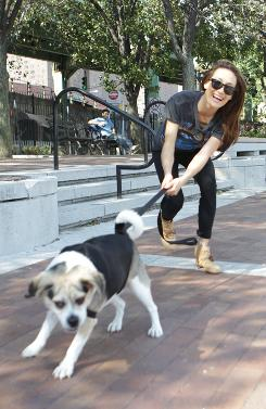 Who's walking whom? Maggie Q likes to spend time with dogs that are up for adoption at the Bideawee shelter in New York.
