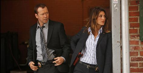 Donnie Wahlberg and Jennifer Esposito star in CBS' Blue Bloods, the season's best new series, according to USA TODAY's poll of viewers.