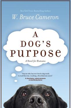 """I hope the character stays true to being a real dog,"" author W. Bruce Cameron says of Bailey, his canine protagonist in a book that explores reincarnation. ""This isn't a magic dancing dog, This is not a talking dog."""
