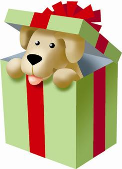If your house and heart are ready, the holidays are as good a time as any to give a dog a home.