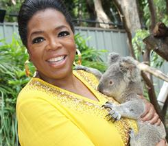 Oprah Winfrey cuddlles with a koala named 'Elvis' at Hamilton Island Wildlife Park in Australia.