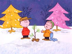 Charlie Brown, Linus and the rest of the Peanuts gang learn the true meaning of Christmas while decorating a sad little pine tree left on the lot.