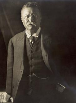 "That's ""Colonel"" to you: When Theodore Roosevelt left office after his second term, he didn't want to be called ""Mr. President."""