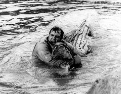 Lee Majors wrestles a reptile during a 1974 episode of The Six Million Dollar Man.