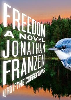 Fiction: Jonathan Franzen's Freedom was on numerous year's-best lists, including USA TODAY's.