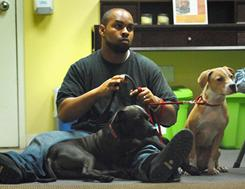 Lawrence Minnis, now retired from the Army and shown here with Ebony and Nina, was among the first to graduate from the Dog Tags program in 2008. The program was launched by the Washington Humane Society to link up shelter dogs in need of additional attention and training with veterans undergoing rehabilitation at nearby Walter Reed Army Medical Center.