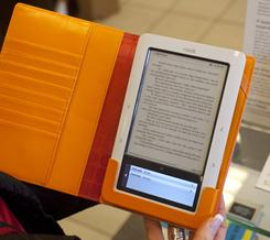 Book titles for digital devices such as this Nook electronic reader are exploding in popularity.