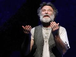 Fearful symmetry: Robin Williams plays Tiger.