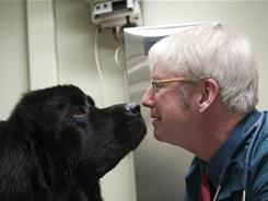 """There's great risk"": Marty Becker, a nationally recognized veterinarian from Coeur D'Alene, Idaho, gets to know his Newfoundland patient, Oberon, owned by Rosemary O'Bryan. Becker worries about people relying too much on the Web to diagnose their pets' illnesses."