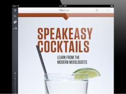 'Speakeasy Cocktails' features 16 chapters covering cocktail-making ingredients, tools, techniques and history and more than 200 recipes.