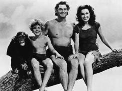Out on a limb: Cheetah, Johnny Sheffield, Johnny Weissmuller and Maureen O'Sullivan. Reports surfaced that Cheetah died on Christmas Eve at the age of 80, but experts are doubtful.