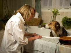 Dog days: Beth's (Diane Keaton) love for her rescued dog Freeway steers the character-driven, heartfelt 'Darling Companion.'