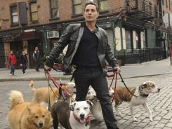 Dog trainer/behaviorist Justin Silver mediates the problems of New York's four-legged residents and their masters in 'Dogs in the City.'