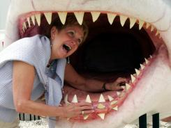 Diane Rock of Baldwinsville, N.Y., sticks her head into the mouth of a shark replica used in the movie 'Jaws' during the original JawsFest in 2005.