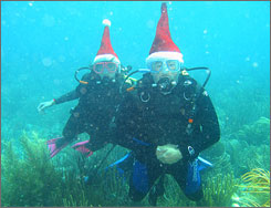 Charlie Stortz and his wife, Jackie, scuba dive off Puerto Rico. This is their Christmas card.