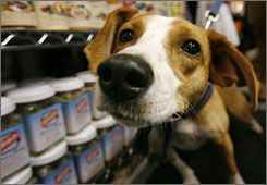 Many dog and cat foods included in a recall that started almost four months ago are still off store shelves. (Here, Nittany stretches his owner's leash at the Big Bad Wolf pet store in Washington. D.C.)