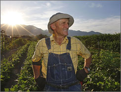 Grant Holdaway, 76, owner of Vineyard Gardens in Vineyard, Utah, takes a break from working in his field at sunrise.