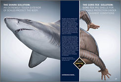 Ads for Gore-Tex outdoor apparel feature creatures that morph into humans, or vice versa.