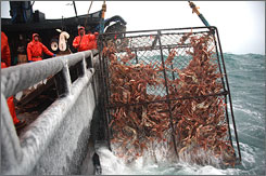 Deadliest Catch follows the crews of vessels on the Bering Sea through 60-mph winds and four-story waves.