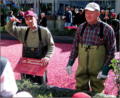 "Justin Hagan, left, and Henry Strozier in the ""cranberry bog"" at Rockefeller Center."