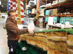 Hargrove Inc. employee Branson Wills cuts the grass on a float for the state of Illinois, which is to be used in the Inaugural Parade on Tuesday.