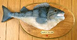 Mechanized Frankie the Fish stars in a popular Filet-O-Fish ad. The ad's been viewed on YouTube more than a million times.