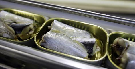 Sardines aren't one species of fish. Instead, sardines are any of dozens of small, oily, cold-water fish that are part of the herring family that are sold in tightly packed cans.