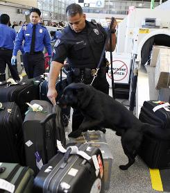 LAX police officers use a bomb-sniffing dog to check baggage at the Tom Bradley International Terminal.