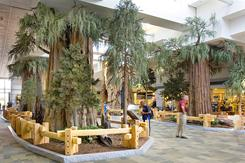 "The Fresno Yosemite International ""sequoia-scape"" in the central terminal lobby."
